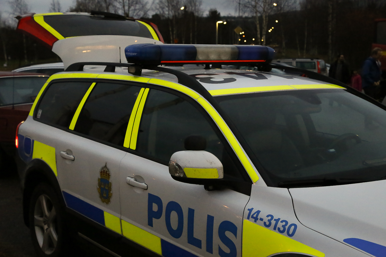 Villainbrott i Sveg