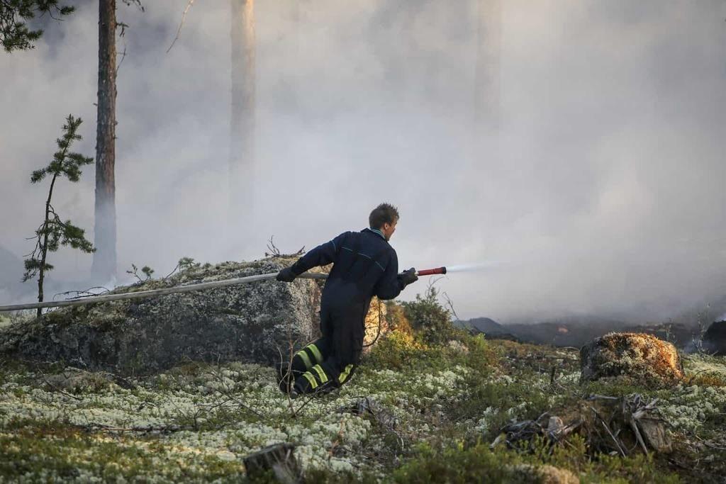 Flertalet larm har handlat om skogsbränder och blixtnedslag i byggnader. Blixtarna har slagit ned på högt belägna och svårtillgängliga platser, vilket försvårar arbetet för brandmännen. Bilden är tagen vid ett annat tillfälle. Foto: Morgan Grip