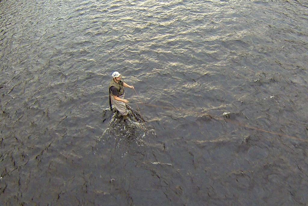 Uppmanar till försiktighet vid fiske – rekordlåga vattennivåer och höga temperaturer. ARKIVBILD. Foto: Morgan Grip