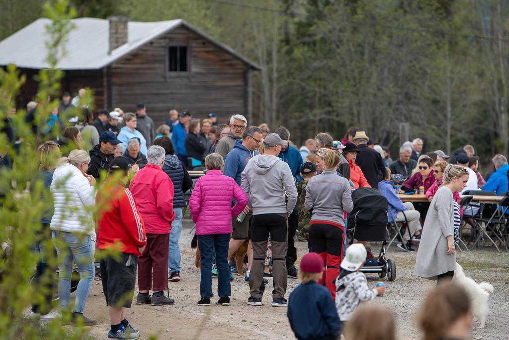 Det årliga kosläppet på Molycka Gård i Ytterberg blev som alltid välbesökt. Foto: Morgan Grip