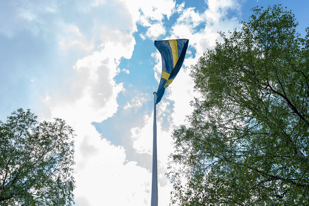 Flaggan hissades till tonerna av Sveriges nationalsång. Foto: Morgan Grip