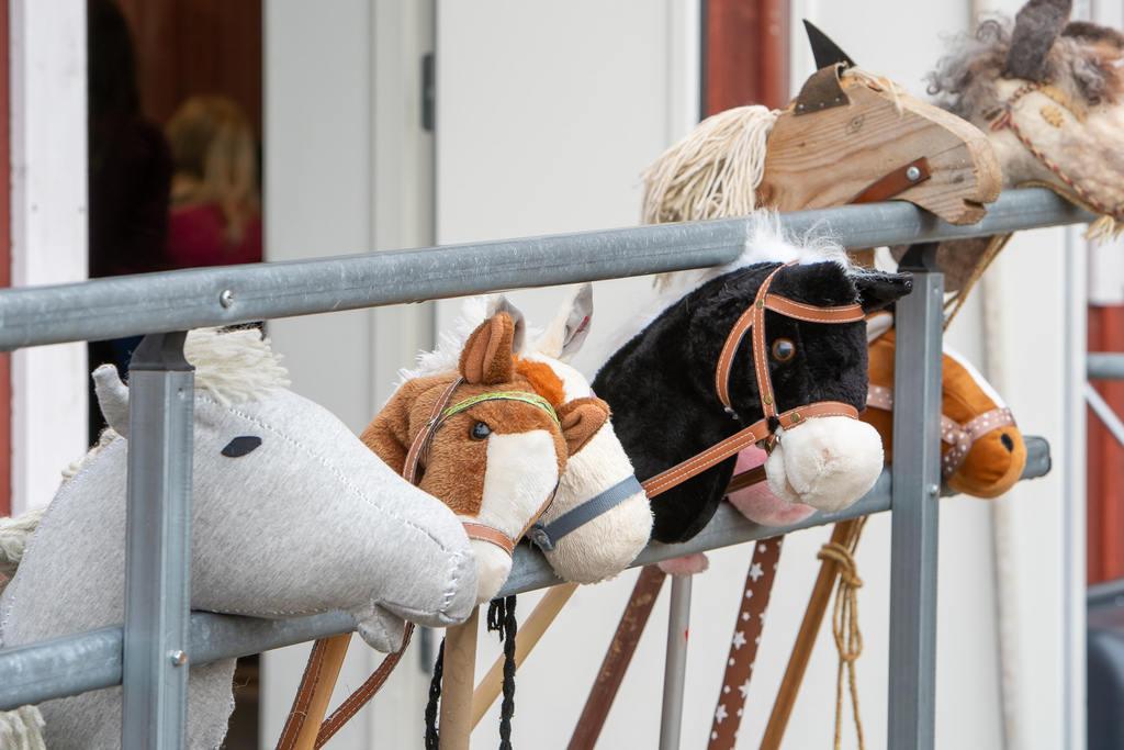 Käpphästtrenden har kommit till Sveg. Foto: Morgan Grip