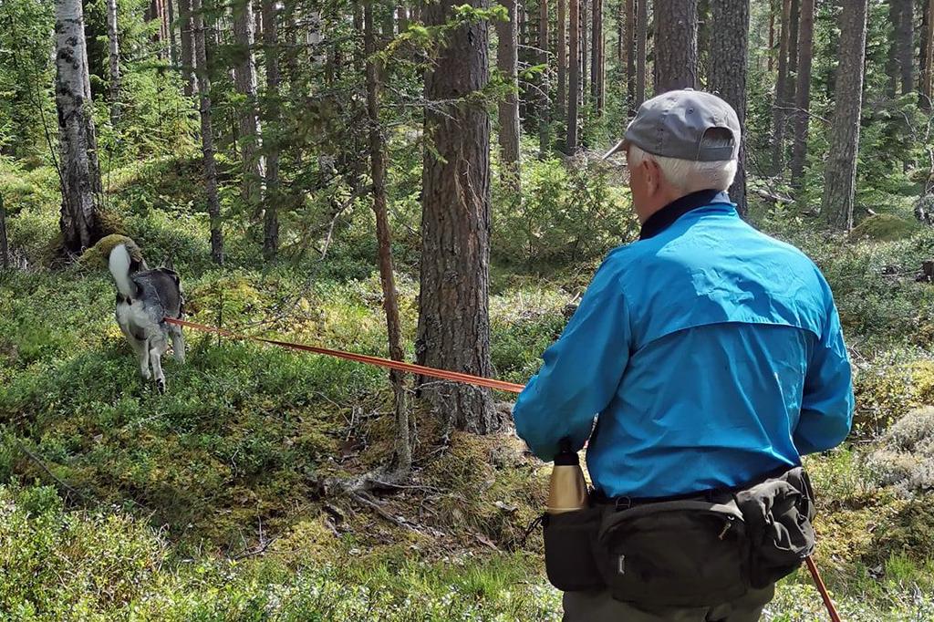 Ytterbergs Viltspår & Eftersök bjöd för tredje året in till viltspårprov. Foto: Ytterbergs Viltspår & Eftersök