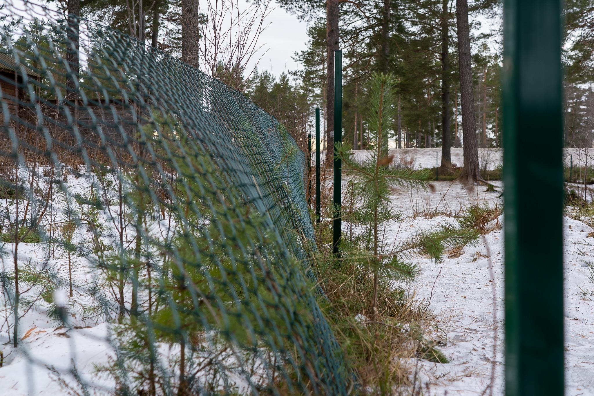 Hundrastgården i Sveg monteras ned.