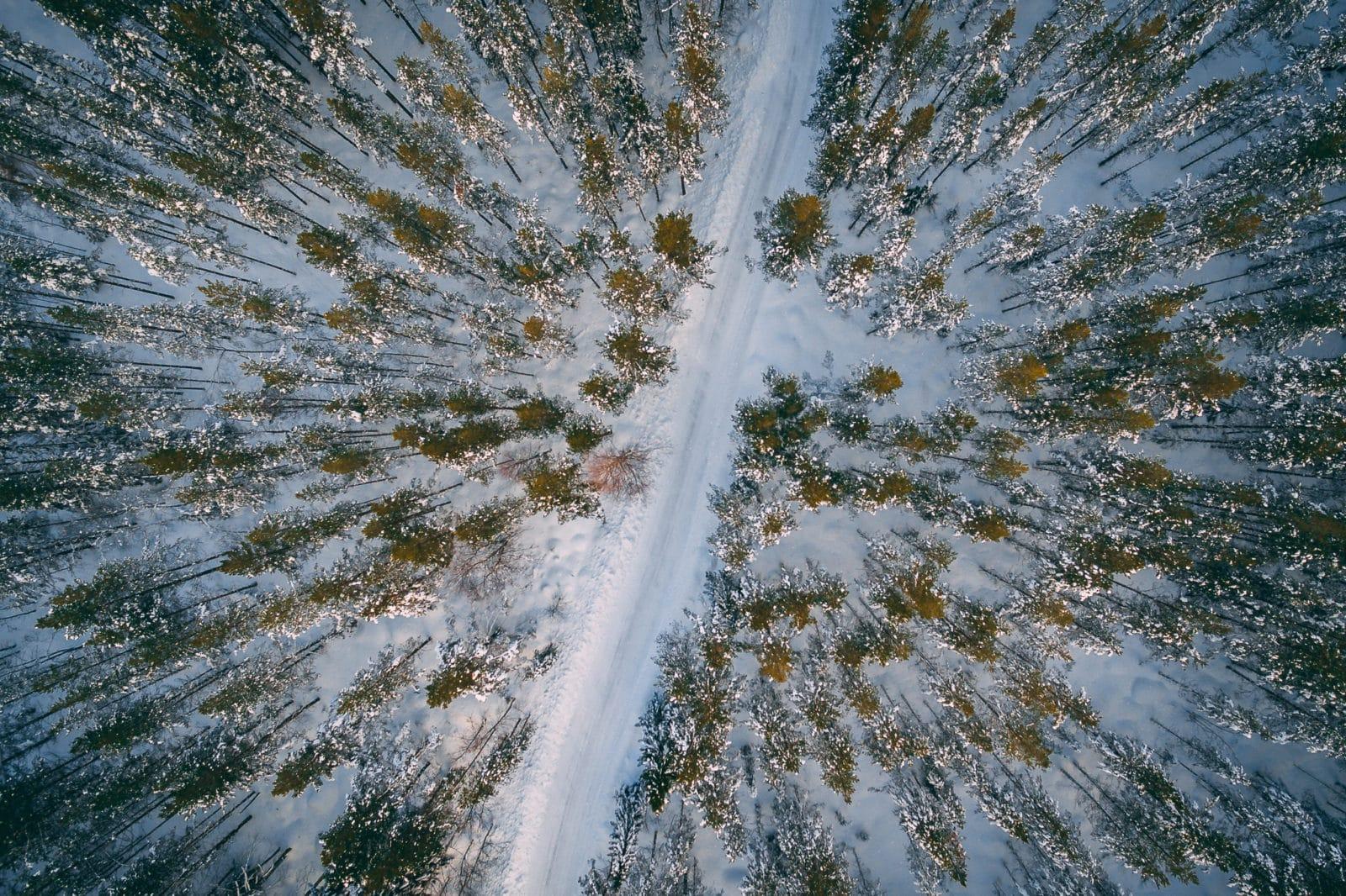 Frågor och svar om enskilda vägar. Foto: Morgan Grip