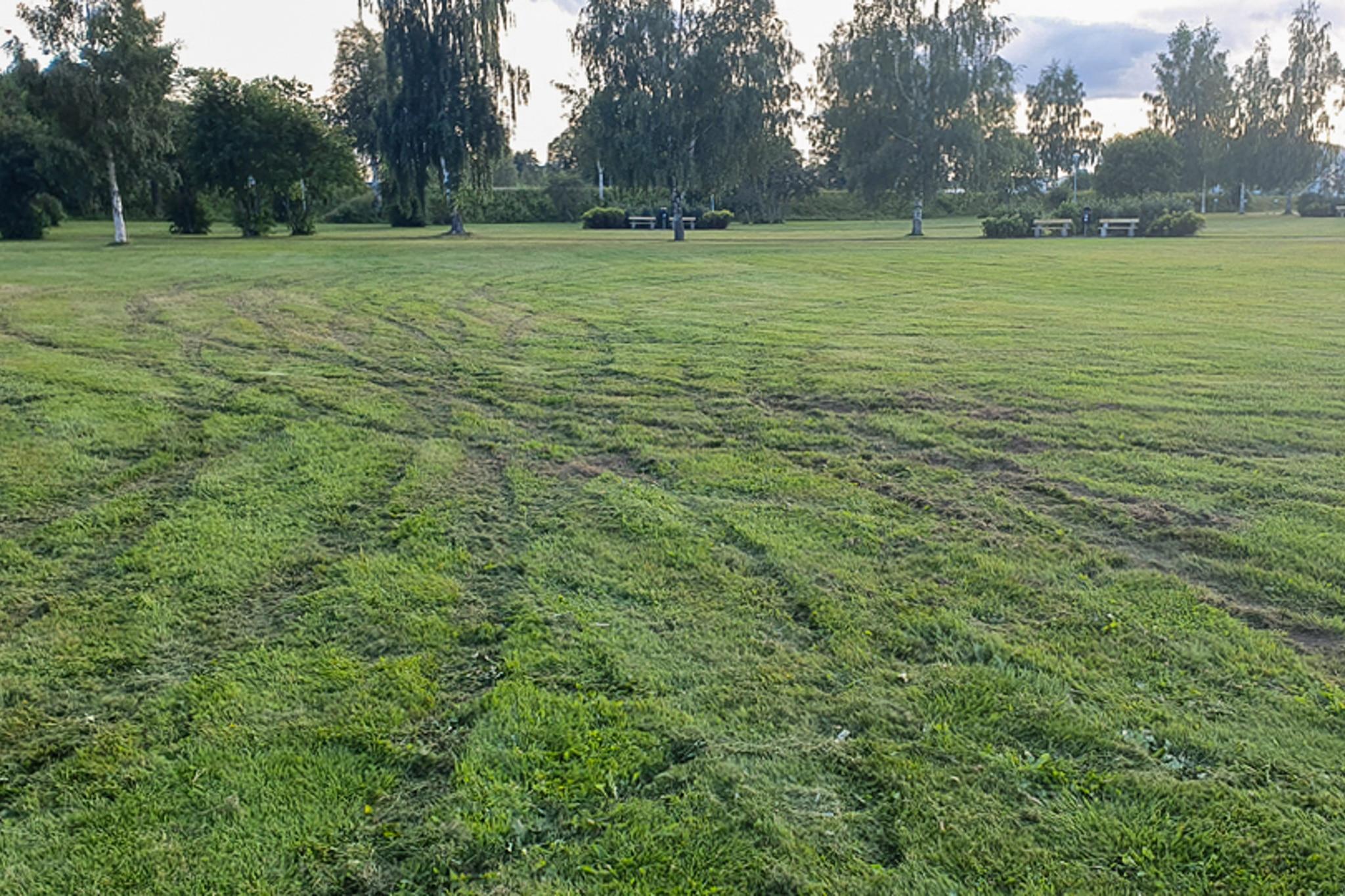 2 500 kvadratmeter gräsmatta sönderkörd