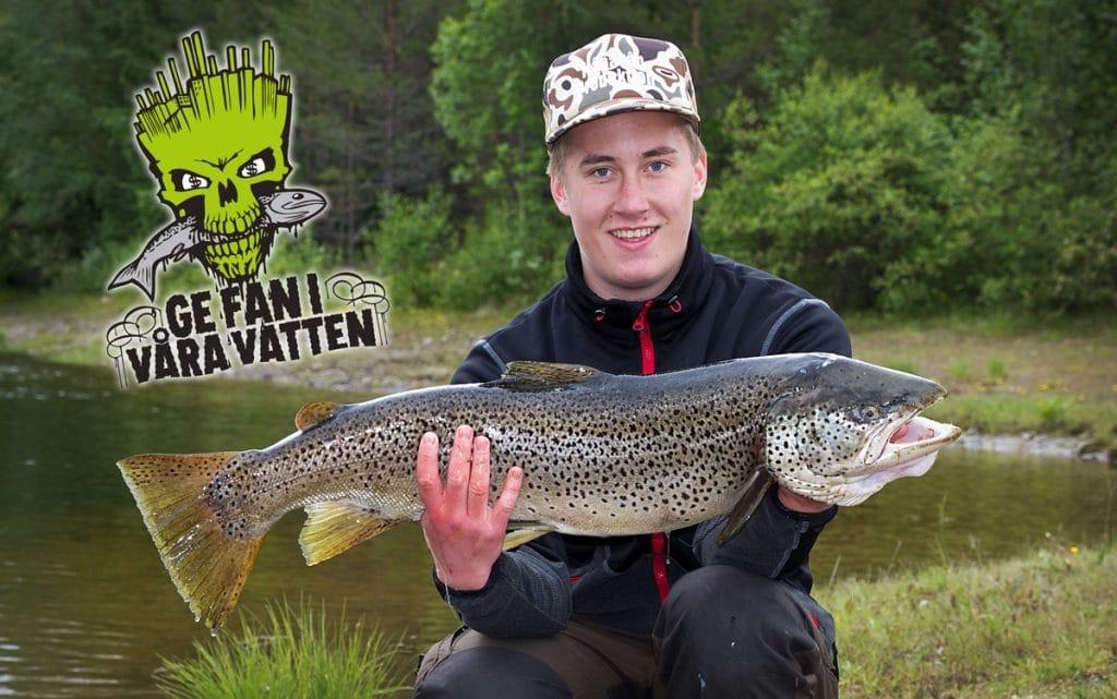 Foto: Håkan Färnlund / Härjedalens kommun
